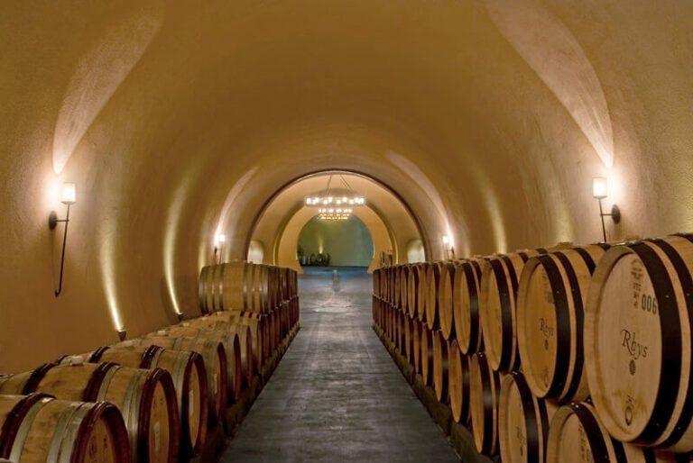 Rhys Wine Cave